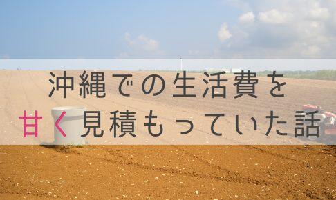 沖縄 生活費 安い 高い
